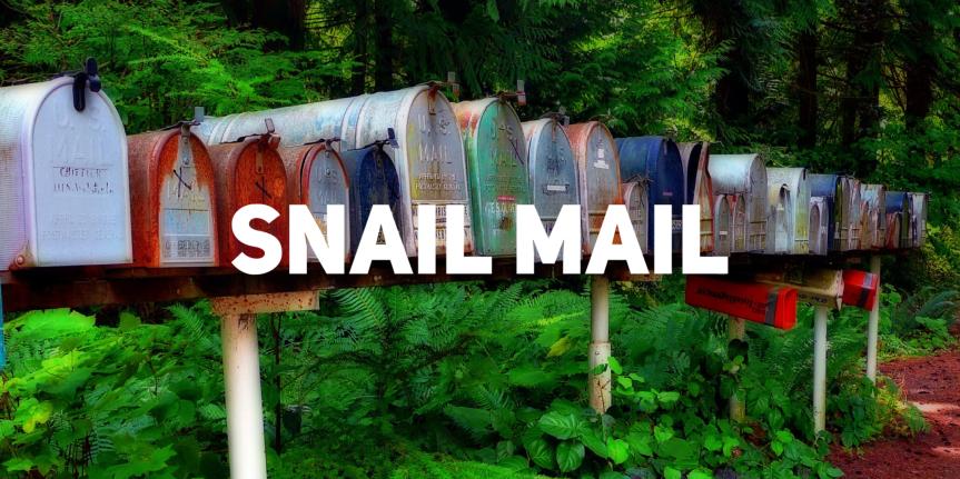 62/365 snail-er than asnail